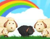 Black sheep chocolate — Stock Photo