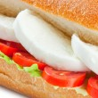 Sandwich with mozzarella - Stock Photo