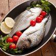 Two sea bream — Stock Photo