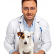 Veterinarian and dog — Stock Photo