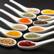 Twelve spices — Stock Photo