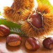 Royalty-Free Stock Photo: Chestnuts