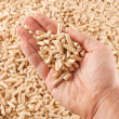 Wood pellets in hand - Stock Photo