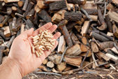 Wood pellets in hand — Stock Photo