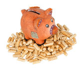 Wood pellets with piggy bank — Stock Photo