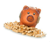 Wood pellets with piggy bank — Foto de Stock
