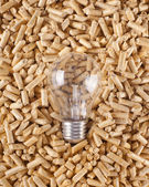 Production of electricity with wood pellets — Stock Photo