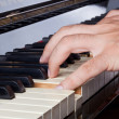 Stock Photo: Piano keyboard made of ivory with hands