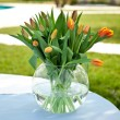 Tulips — Stock Photo #26475273