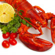 Stock Photo: Red lobster
