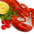Red lobster — Stock Photo