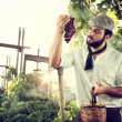 Stock Photo: Farmer in vineyard