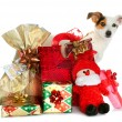Gift boxes with cute little dog — Stock Photo #34111271