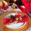 Decorated Christmas Dinner Table Setting — Stock Photo #34482477