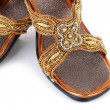 Pair of traditional Indian sandals — Stock Photo #36655285