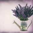 Watering can with plucket lavender — Stock Photo