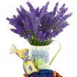 Watering can with lavender sachet — Stock Photo