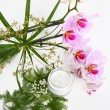 Face cream with herbs and pink orchids — Stock Photo