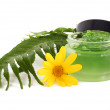 Cosmetics cream in the green jar — Stock Photo