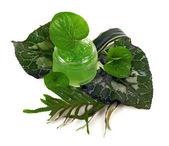 化粧品クリーム緑の瓶の中 — ストック写真