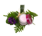 Cosmetic pink cream with herbs and flowers — Stock Photo