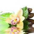 Green cream with orchid and stones — Stock Photo