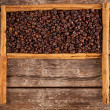 Frame with coffee beans and ceylon cinnamon — Stock Photo #37299539