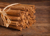 Bunch of Ceylon cinnamon — Stock Photo