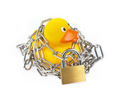 Yellow Rubber Duck with chain and padlock — Stock Photo