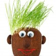 Puppet with ground wheat sprouts for hair. — Stock Photo #38386371