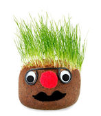 Puppet with ground wheat sprouts for hair. — Stock Photo