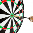 Stock Photo: Bulls eye target with dart