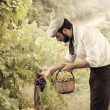Farmer in vineyard — Stock Photo #38439449