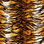 Tiger Print Background — Stock Photo