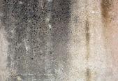 Old textured concrete wall — Stockfoto