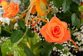 Beautiful bouquet of orange roses. — Stock Photo