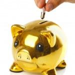 Golden piggy bank with small light bulbs — Stock Photo #42467791