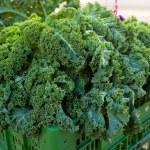 Kale at farmers market — Stock Photo #46259885