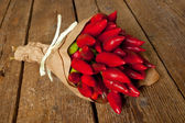Bunch of red hot pepper — Stockfoto