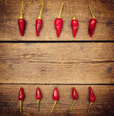 Hot chili peppers — Stok fotoğraf