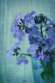 Fond vintage avec des fleurs sauvages — Photo