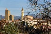 Vinci-Panoramic view — Stock Photo