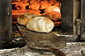 Bread freshly made in oven — Stock Photo