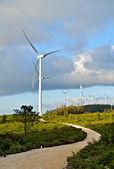 Eolic generator park — Stock Photo