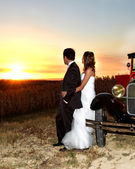 Grooms couple at sunset — Stock Photo
