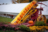 Composition of bright orange pumpkins on harvester. — Stock Photo