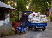 Life in Bali — Stock Photo