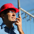Stock Photo: Electrical Engineer At Work