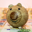 Piggy bank — Stock Photo #18541511
