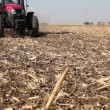 Stock Video: Tractor Sowing Field